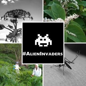 AlienProfile